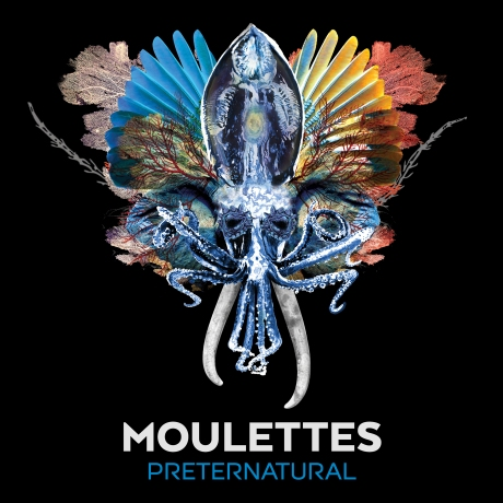 Monolith Cocktail - Moulettes 'Preternatural'